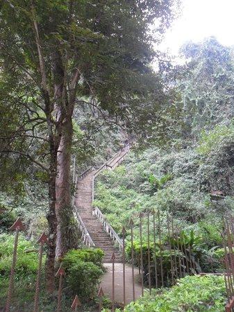 Tham Chang Cave : las escaleras