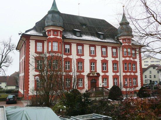 Narrenstuben Schloss Bonndorf