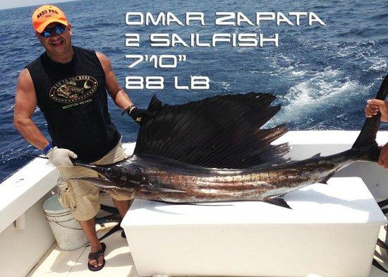 Star Fleet Sportfishing: OMAR ZAPATA - PEZ VELA