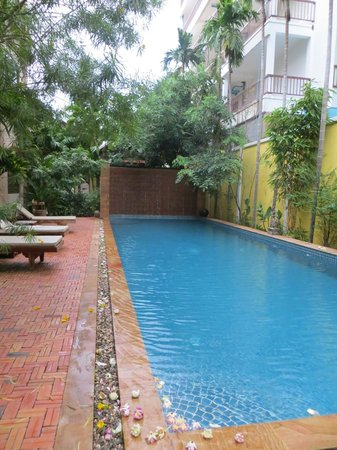 Golden Mango Inn : The pool