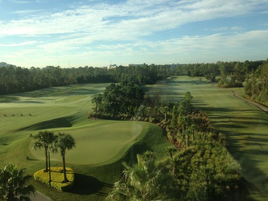 Waldorf Astoria Orlando : Beautiful view from our 5th floor room
