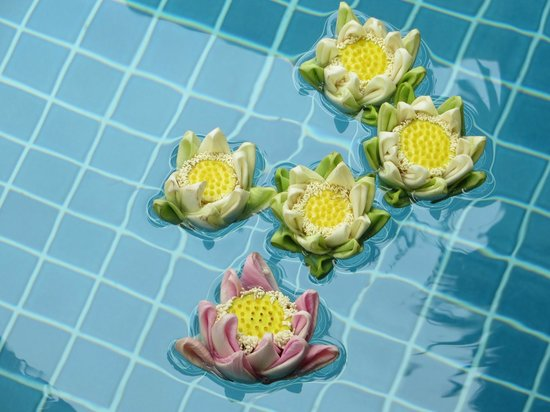 Golden Mango Inn : Flowers in the pool