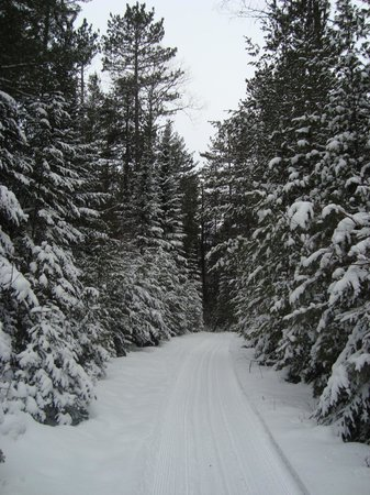 National Forest Lodge: gorgeous ski trails!