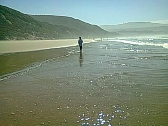 Walking along Buffalo Bay beach