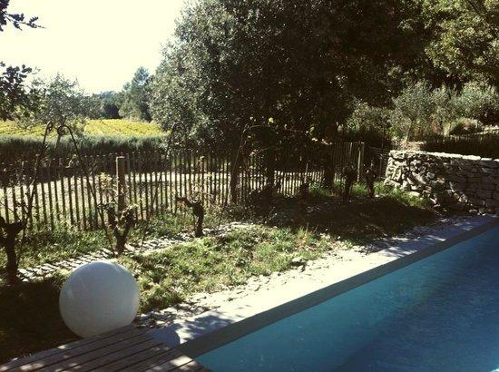 Les Pierres Sauvages: Pool