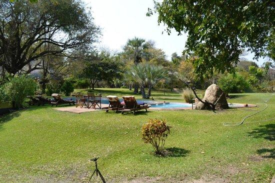 Waterberry Zambezi Lodge: Somewhere to relax and cool down...