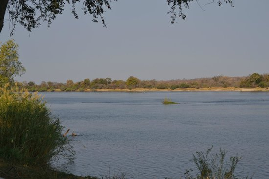 Waterberry Zambezi Lodge: The view from our room