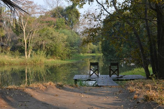 Waterberry Zambezi Lodge: A lovely spot for a G&T
