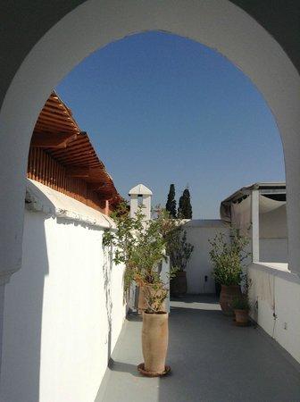 Riad Ariha: rooftop