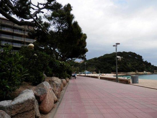Fenals Beach : Paseo en Cala de Fenals