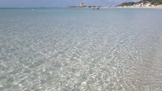 Residence Gli Ulivi : Spiagge a 5 minuti dal residence
