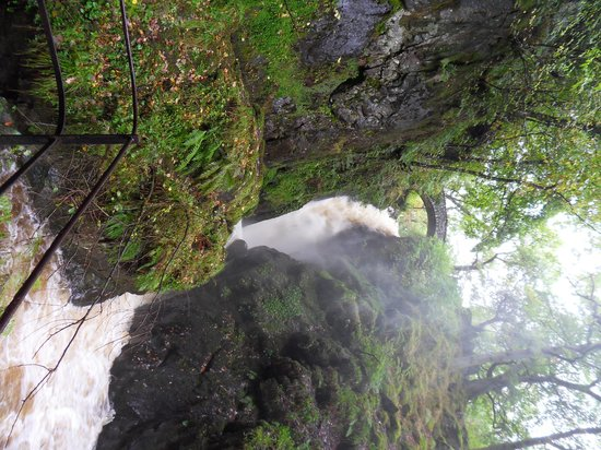 Aira Force: Walk to the waterfall