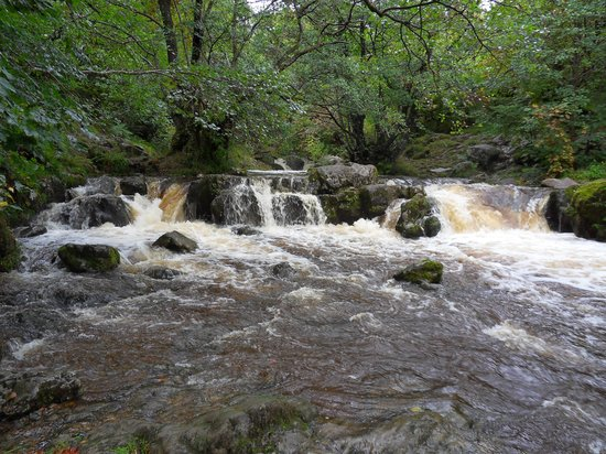 Aira Force: Walk to the Aria Force