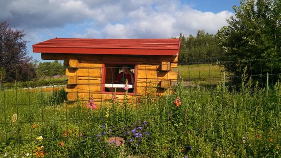 Georgeson Botanical Garden: Kid's Garden Log Cabin
