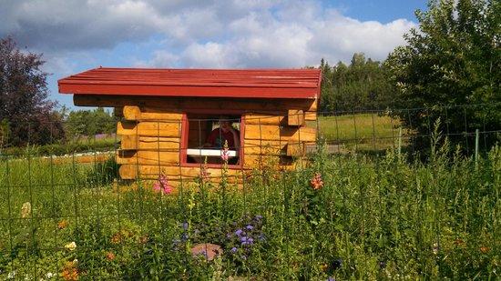 Georgeson Botanical Garden : Kid's Garden Log Cabin