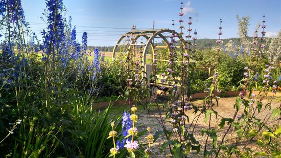 Georgeson Botanical Garden : Lots of Arbors