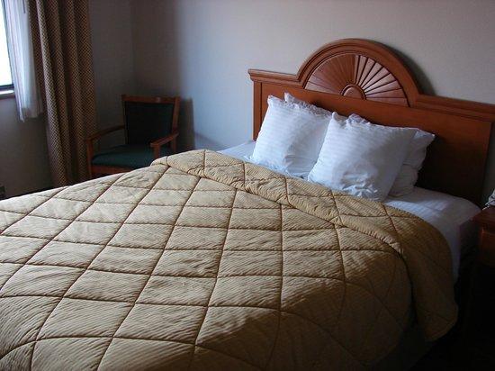 كواليتي إن: Comfortable bed, but old style bedding.