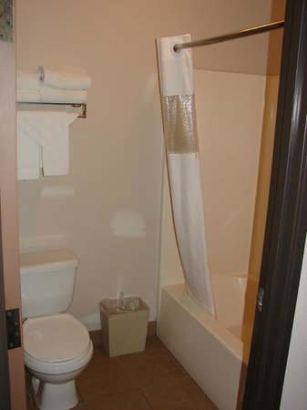 Quality Inn: Toilet/Shower room.