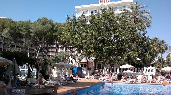 Hotel Riu Festival: Pollbereich