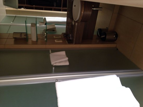 Peermont Metcourt Hotel at Emperors Palace : Shower and toilet cubicle