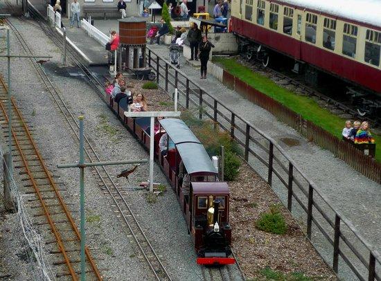 Conwy Valley Railway Museum & Model Shop: Choo Choo!