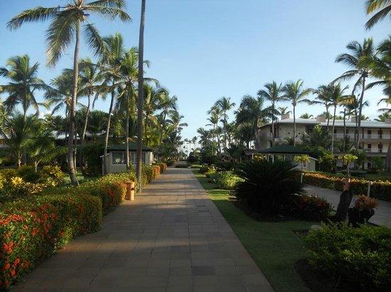 Sirenis Punta Cana Resort Casino & Aquagames: Walkway to beach