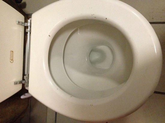 Shanguni Lodge: Old, damages toilet seat
