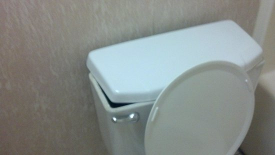 Americas Best Value Inn: Toilet tank lid