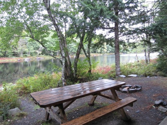 Mersey River Chalets and Nature Retreat: View from cabin over picnic table