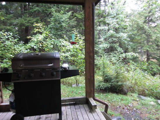 Mersey River Chalets and Nature Retreat: Veranda BBQ