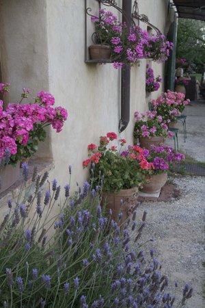 B&B La Canonica di San Michele: The beautiful gardens