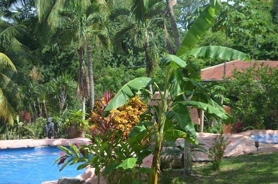 Hotel Los Mangos: Ausblick