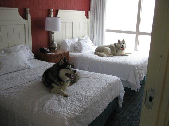 Residence Inn by Marriott Virginia Beach Oceanfront: Taken a break