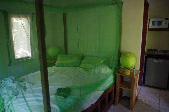 Pachamama Jungle River Lodge : following morning