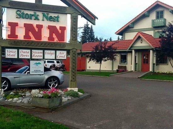 Stork Nest Inn : What's reality....