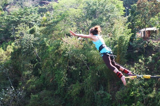 Tropical Bungee