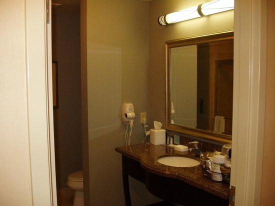 Hampton Inn & Suites Carlsbad: Bathroom