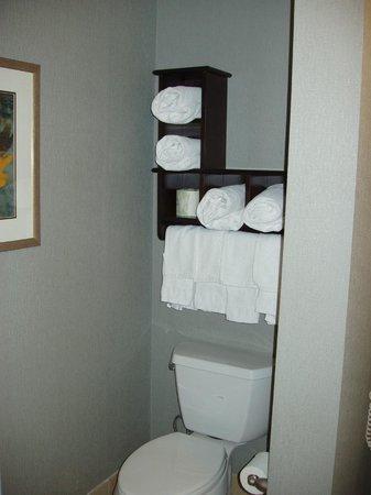 Hampton Inn & Suites Carlsbad: Bathroom