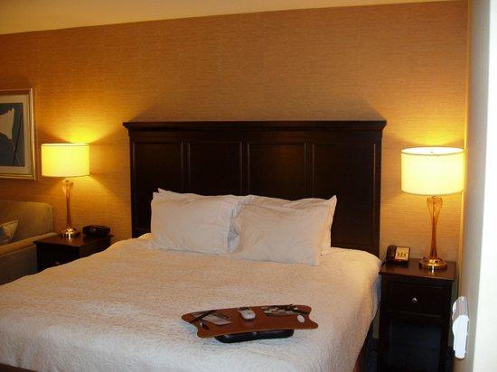 Hampton Inn & Suites Carlsbad: King bed