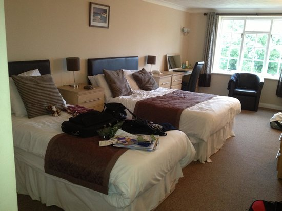 Luccombe Manor Country House Hotel: bedroom with seaview