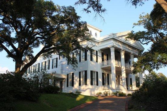 Natchez, MS: Gorgeous home
