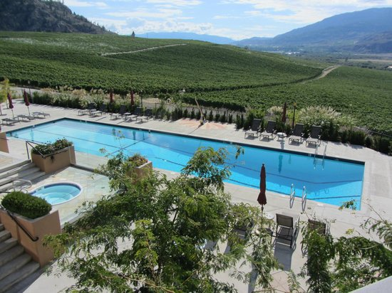 Burrowing Owl Estate Winery: Guesthouse Pool, as seen from outside the Wine Shop