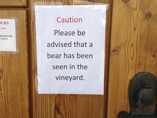 Burrowing Owl Estate Winery: Caution: Bear