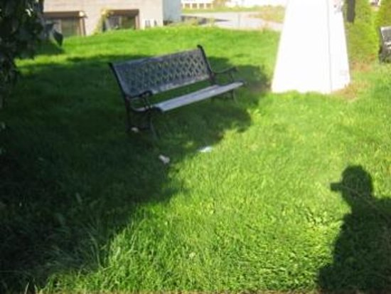 KC's Country Inn: Uncut grass with garbage