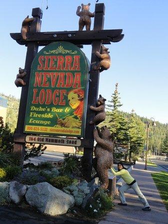 Sierra Nevada Resort & Spa : Não alimente os ursos!
