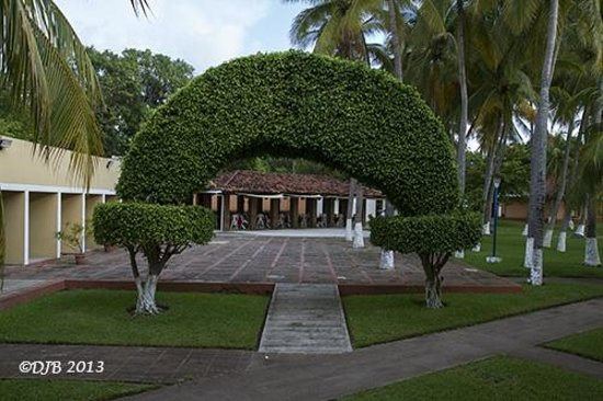 Hotel Pacific Paradise: Hotel Grounds