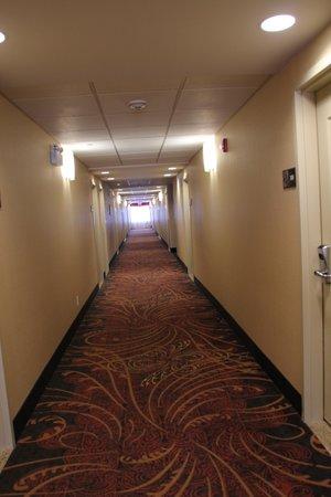 Hampton Inn Elliot Lake: Hallway from room