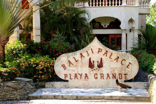The Palace at Playa Grande: The Balaji Palace and one of the resident peacocks