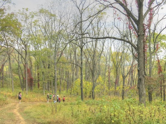 Sky Meadows State Park: Hiking down a trail