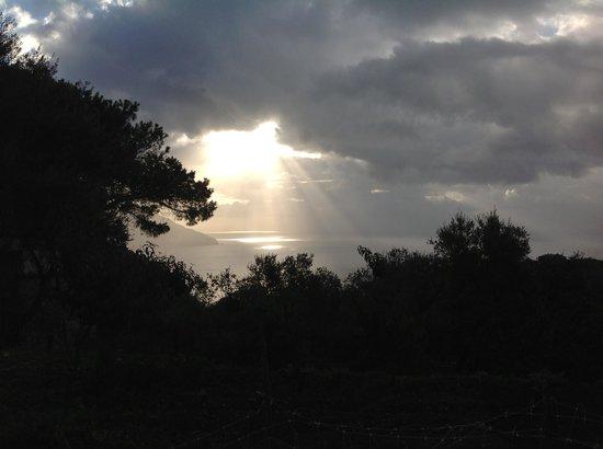 Il Tulipano: morning view